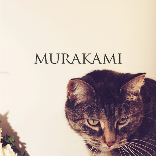 Made In Heights - Murakami