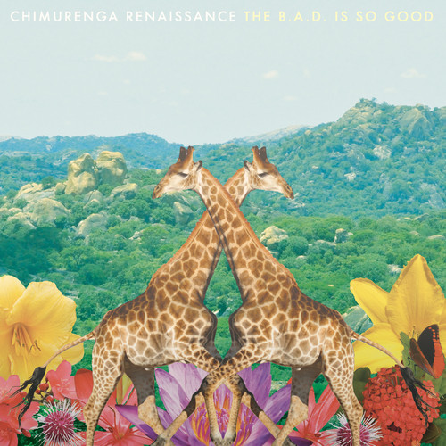 Chimurenga Renaissance - The Bad Is So Good