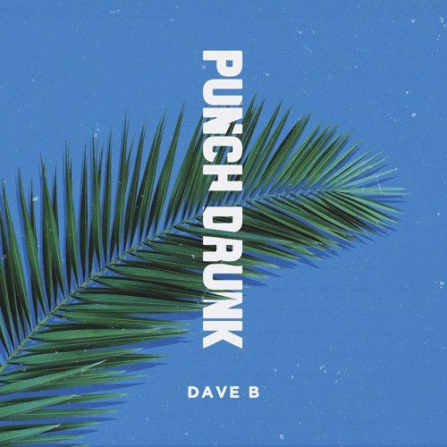 Dave B - Punch Drunk